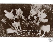 Gambling Rabbits Bunnys Playing Poker Drinking Beer Smoking Cigars Man Cave WOW
