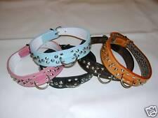 Leather bull terrier collars heavily studded centre dee