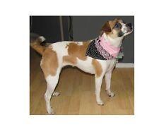 Black and Pink Bandana Dog Puppy Teacup Pet Clothes XXXS - XLarge