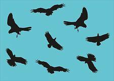 8 Greifvögel Aufkleber Adler Wandtattoo Wintergarten Vogelschutz Vogel AN1486