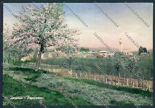 Novara Invorio Foto FG cartolina D7822 SZD