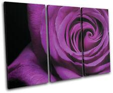 Roses Love Flowers Floral TREBLE TOILE murale ART Photo Print