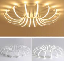 Acrylic LED Light Ceiling Lamp Bedroom Restaurant Chandeliers Lighting Arc-shape