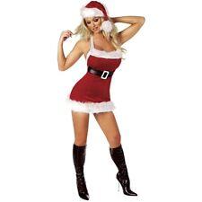 Chic Santa Miss Ms Mrs Claus Costume Christmas Fancy Dress