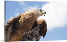 ARTCANVAS Golden Eagle Home Decor Canvas Art Print