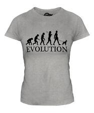 BOSTON TERRIER EVOLUTION OF MAN LADIES T-SHIRT TEE TOP DOG LOVER BULL WALKER
