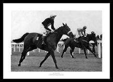 Red Rum prima Grand National WIN 1973 HORSE RACING MEMORABILIA di foto (393)