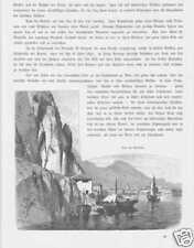 Riva am Gardasee Südtirol HOLZSTICH von 1880