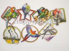 Bird Toy, Parrot Fridge Magnets - Happy Beaks