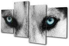 Animals Wolf Eyes Wild MULTI TOILE murale ART Photo Print