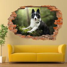 Raza Perros Border Collie Pegatinas de Pared 3D Mural de Arte Decoración De Habitación Oficina Tienda TV1