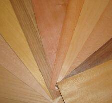 Les échantillons de placage de bois