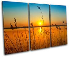 corn field Sunset Seascape TREBLE DOEK WALL ART foto afdrukken