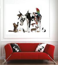 poster poster decorazione da muro Animali ref 57834802 (6 dimensioni)
