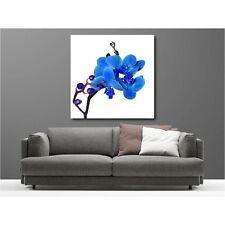 Quadro tela decocrazione quadrato orchidea blu 74063533