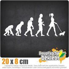 EVOLUTION It-Girl Trend & Style csf0797 JDM Sticker Adesivo