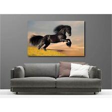 Tableaux toile déco rectangle cheval noir 17900476