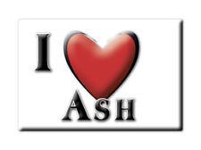 SOUVENIR UK - ENGLAND FRIDGE MAGNET UNITED KINGDOM I LOVE ASH (KENT)