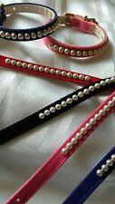 BOUTIQUE Pearl & Velluto Cane Cucciolo COLLARE EX SMALL & Piccolo 8 a 14 Pollici importazioni USA