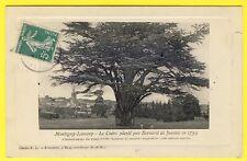cpa 77 Village de MONTIGNY LENCOUP Cèdre planté par B. de JUSSIEU en 1734 Arbre