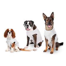 Body Schutzanzug Strampler Hunde nach OP Kastration Sterilisation Wundinfektion