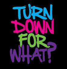 Turn Down For What DJ Snake Lil Jon Hip Hop Rap Music Funny T-Shirt Tee