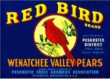 Peshastin Washington Red Cardinal Bird Pear Fruit Crate Label Art Print