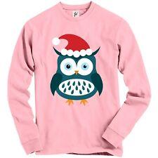 Blue Big Eye Christmas Owl Wearing Santa Hat Adult Christmas Jumper Sweatshirt