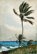 Winslow Homer-Palmera Nassau Vintage Fine Art Print