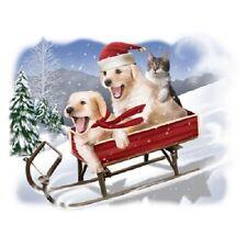 Need For Speed Sledding Dogs  Sweatshirt    Sizes/Colors