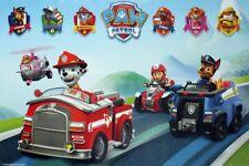 Paw Patrol Vehicles Poster