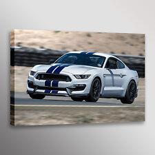 2017 Shelby GT350R Mustang Racecar Car Photo Automotive Wall Art Canvas Print