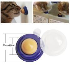 Collations saines Cat Cat Sucre Sucre Lèche Solide Nutrition Energy Ball Jouets