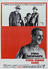 """ Cool Hand Luke "" Paul Newman George Kennedy Klassisches Filmposter Viele"