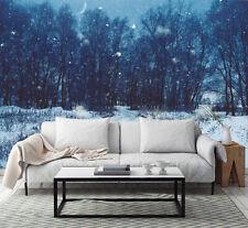3D Forêt de Nuit 2 Photo Papier Peint en Autocollant Murale Plafond Chambre Art