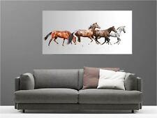Cuadro pinturas decoración en kit Caballos ref 45806236