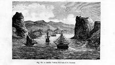 Stampa antica Isola Saint THOMAS Antille USA 1889 Old print Engraving
