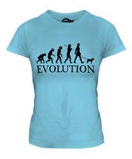 Miniature Bull Terrier Evolution Of Man Ladies T-Shirt Top Dog Walker Walking