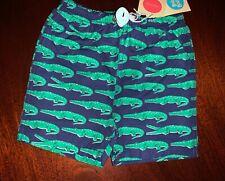 KIKO /& MAX Toddler Boy 4T Jawsome Alligator Rashguard /& Swim Trunks Set NWT