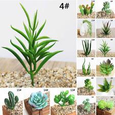 Artificial Office Flower Gif Miniature Decor Floral Plant Echeveria Cactus Home