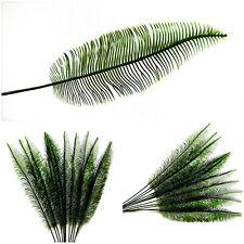 Palmenblätter Deko.Palmenblätter Deko Günstig Kaufen Ebay