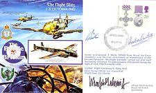 RAFA17 WW2 WWII Battle of Britain Me109 RAF cover signed Winfried Schmidt KC