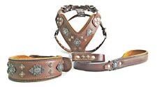 Bestia Azteca Completo Conjunto! Collar, Arnés y plomo. 100% cuero tachonado de diseño.