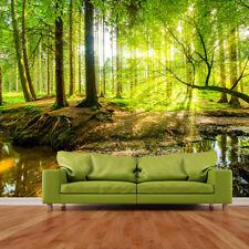 Zon schijnt door Green Bomen Bos Wall Mural Landscape Foto Wallpaper