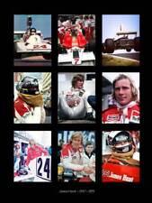James Hunt multi Race Poster Art Print