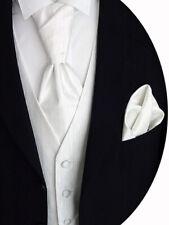 VESTE DE MARIAGE AVEC PLASTRON, Pochette de costume et cravate, crème, modèle N°