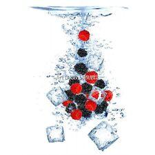 Adesivi frigo decocrazione Cubetti di ghiaccio fruits 60x90cm ref 6243 6243