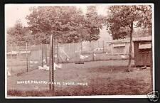 Kinver near Cookley & Stourbridge. Poultry Farm.