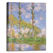 Monet pioppi nel sole design quadro stampa tela dipinto telaio arredo casa