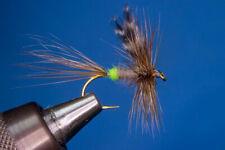 Fliegentom Trockenfliege 3 Stück extended Body braune CDC Sedge